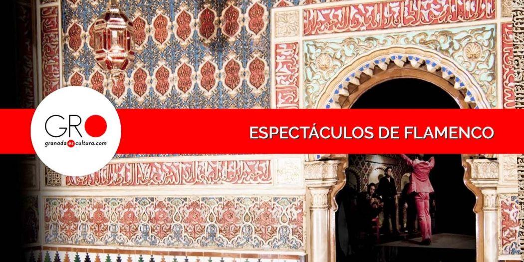 Espectáculos y shows de Flamenco en Granada